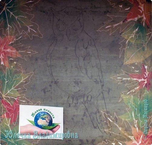 В небе кружит ночью длинной Самый крупный, самый сильный Из большой семьи совиной Крючконосый хищный…        (Филин) А. Измайлов  фото 4
