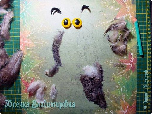 В небе кружит ночью длинной Самый крупный, самый сильный Из большой семьи совиной Крючконосый хищный…        (Филин) А. Измайлов  фото 5
