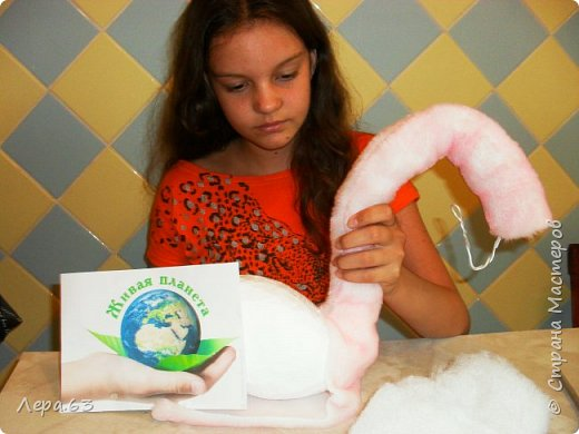 Внешний вид фламинго — статной птицы, принадлежащей к семейству фламинговых, замечателен. Гибкая, почти лебединая шея, длинные ноги, мягкие пёрышки, а главное, окрас: белый, нежно-розовый, красный, плюс вариации этих цветов.  Хвост у фламинго короткий, а вот клюв – массивный, выгнутый вниз. Голова – небольшая, на ней есть неоперенные участки – кольцо вокруг глаз и подбородок.  В течение светового дня фламинго отыскивает пищу. Важно передвигаясь на своих длинных, как ходули, ногах, наклонив туловище, на мелководье их внимание привлекают сине-зеленые водоросли, мелкие ракообразные, личинки насекомых.  Клюв фламинго нередко называют «цедилкой». Ухватив добычу, птицы размахивают головой, отделяя пищу от воды.  Всем известна красивая песня под названием «Розовый фламинго». А почему фламинго розовый, или красноватый? Такую окраску оперению этой птице придают красящие вещества липохромы, которые фламингообразные получают вместе с пищей.  Перекусив, птицы бредут в обратном направлении. В середине дня взрослые фламинго занимаются гигиеническими процедурами – чистят клювом свои перья.  Живут фламинго в башенках. Башенки – это узкие гнёзда, в них птицы откладывают яйца. Чтобы поместиться в гнезде, фламинго поджимают под себя свои длинные ноги.  Поза при отдыхе у фламинго своеобразна. Как правило, птица стоит на одной ноге, закинув голову на спину. У природы свои причуды. фото 11