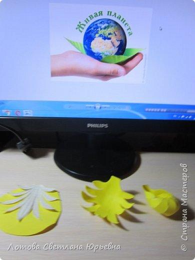 Венерин башмачок настоящий -растение, внесенное в Красную книгу Чувашии, произрастает в тенистых смешанных лесах и на лужайках. У этой орхидеи ярко-желтая губа и темно-пурпурные лепестки, а форма цветка напоминает изящную женскую туфельку. Яркая окраска и эффектная форма орхидеи напоминают крылья бабочек! фото 3