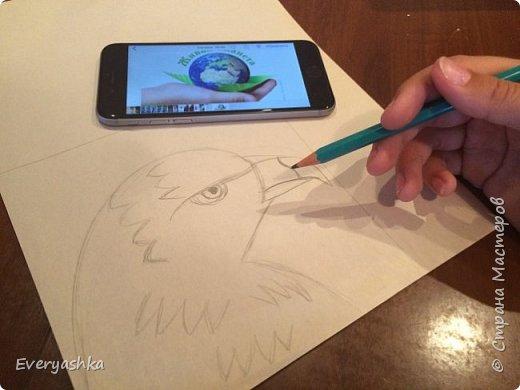 Степной орёл фото 3