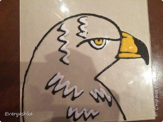 Степной орёл фото 5