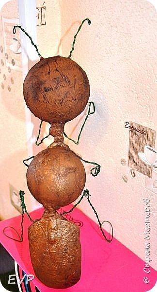 Знакомтесь - Долиходерус сибирский. Отряд Перепончатокрылые – Семейство Муравьи. фото 8