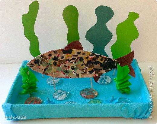 Хотим представить вам рыбку Ленок фото 8
