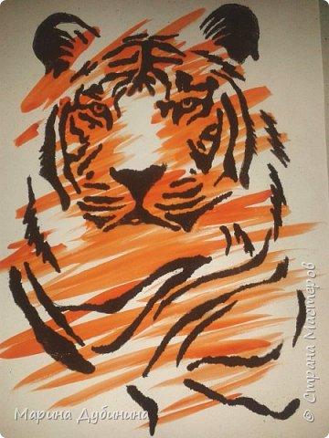 Амурский или уссурийский тигр самый крупный из всех кошачьих, самый сильный и свирепый хищник.Вес тигра больше 300 кг, он может развить скорость до 50 км в час. Тело очень гибкое, голова округлая, густая шерсть светлого окраса. На брюхе 5-ти сантиметровый слой жира, который спасает его от леденящего ветра и сильных морозов.Ареал обитания тигра сосредоточен в охраняемой зоне на юго-востоке России, по берегам Амура и Уссури в Хабаровском и Приморском крае.  фото 7