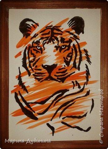 Амурский или уссурийский тигр самый крупный из всех кошачьих, самый сильный и свирепый хищник.Вес тигра больше 300 кг, он может развить скорость до 50 км в час. Тело очень гибкое, голова округлая, густая шерсть светлого окраса. На брюхе 5-ти сантиметровый слой жира, который спасает его от леденящего ветра и сильных морозов.Ареал обитания тигра сосредоточен в охраняемой зоне на юго-востоке России, по берегам Амура и Уссури в Хабаровском и Приморском крае.  фото 1