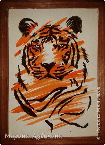 Амурский или уссурийский тигр самый крупный из всех кошачьих, самый сильный и свирепый хищник.Вес тигра больше 300 кг, он может развить скорость до 50 км в час. Тело очень гибкое, голова округлая, густая шерсть светлого окраса. На брюхе 5-ти сантиметровый слой жира, который спасает его от леденящего ветра и сильных морозов.Ареал обитания тигра сосредоточен в охраняемой зоне на юго-востоке России, по берегам Амура и Уссури в Хабаровском и Приморском крае.  фото 8