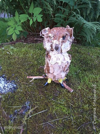 """Вот такая птичка получилась... Филин(лат.Bubo bubo)- хищная птица из семейства совиных,самый крупный представитель.Тело сложение """"бочкообразное"""".Ярко-оранжевые глаза и пучки удлинение перьев над ними.Масса более 4 кг,размах крыльев-до 2 метров.Охотится на зайцев,грызунов,ежкй,ворон,водоплавающих и др.птиц. ФИЛИН - ОЧЕНЬ ПОЛЕЗНАЯ ПТИЦА.Уничтожает множество грызунов. Сейчас филин нуждается в охране и внесен в Красные книги многих стран.Причина этого-отлов птиц,вырубка лесов... фото 14"""