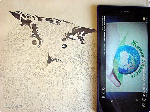 Филин нарисован простым карандашом на бумаге и вырезан. Затем лист с картинкой был наложен на темный фон и вставлен в рамку. фото 2