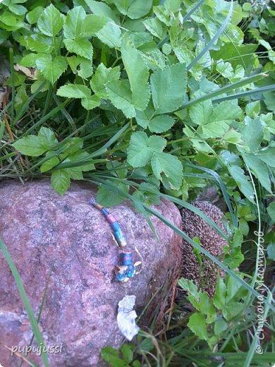 Мне очень нравятся стрекоза. Они похожи на маленькие вертолётики. Вот моя стрекоза в полете. фото 14