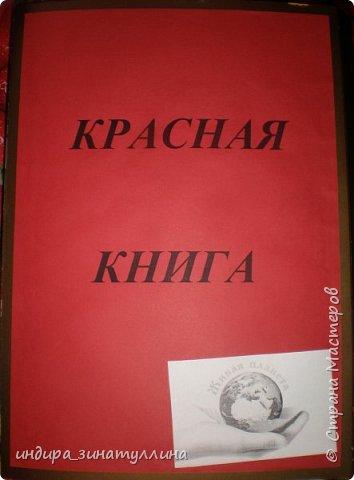 открываем красную книгу фото 1