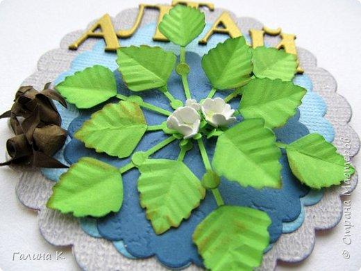 Рогульник плавающий, или Водяной орех плавающий, или Чили́м или Чёртов орех  — однолетнее водное растение, происходящее из южных районов Евразии и Африки. У нас он растет на Манжерокском озере.  Красивые розетки листьев, складывающиеся в причудливый резной узор, скромные цветочки и съедобный плод, который обладает лечебными свойствами. Плоды в давние времена широко употреблялись в пищу, но сейчас их использование сократилось, или забыто вообще. Водяные орехи найдены в постройках каменного века. Размеры запасов говорят о том, что растение играло роль, аналогичную роли картофеля в наше время. Раскопки показывают, что на Руси в X—XII веках употребление водяных орехов было очень широко распространено. Их ели, как каштаны, или сушили, толкли и добавляли в муку.  фото 4