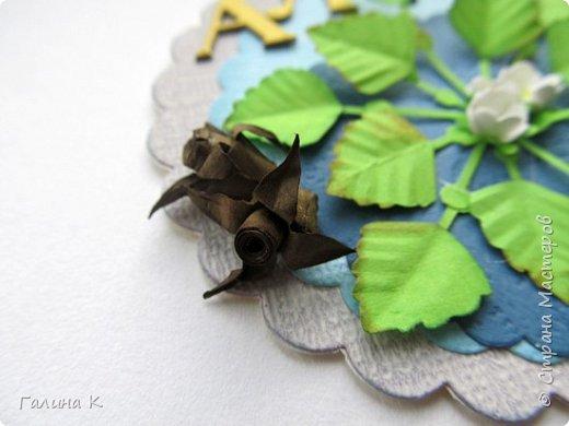 Рогульник плавающий, или Водяной орех плавающий, или Чили́м или Чёртов орех  — однолетнее водное растение, происходящее из южных районов Евразии и Африки. У нас он растет на Манжерокском озере.  Красивые розетки листьев, складывающиеся в причудливый резной узор, скромные цветочки и съедобный плод, который обладает лечебными свойствами. Плоды в давние времена широко употреблялись в пищу, но сейчас их использование сократилось, или забыто вообще. Водяные орехи найдены в постройках каменного века. Размеры запасов говорят о том, что растение играло роль, аналогичную роли картофеля в наше время. Раскопки показывают, что на Руси в X—XII веках употребление водяных орехов было очень широко распространено. Их ели, как каштаны, или сушили, толкли и добавляли в муку.  фото 6
