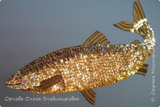 Белорыбица. фото 9