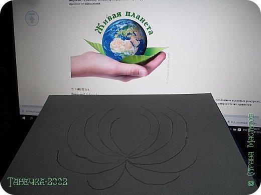 Водяная лилия (кувшинка, Nymphaeáceae) - многолетнее травянистое водное растение, принадлежащее к классу кувшинковых, или нимфейных. Занесена в Красную Книгу Республики Коми.Темно-бурое толстое корневище (до 2,5 м в высоту) покрыто небольшим количеством черешков листьев. За счет целой системы воздухоносных каналов обеспечивается дыхание растения и удержание на поверхности при сильных ветрах.  Листья плавающие, округлой формы, диаметром до 30 см, меняют цвет с возрастом, от красноватого до темно-зеленого и красновато-фиолетового. Одиночные крупные цветки белого цвета, в диаметре до 20 см. Чашечка, состоящая из 3-5 лепестков, обладает сильным нежным запахом. Цветет в течение всего лета. Плоды зеленого цвета, шарообразной формы, созревают под водой.(Красная Книга РеспубликиКоми) фото 3