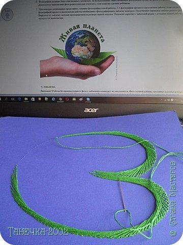 Водяная лилия (кувшинка, Nymphaeáceae) - многолетнее травянистое водное растение, принадлежащее к классу кувшинковых, или нимфейных. Занесена в Красную Книгу Республики Коми.Темно-бурое толстое корневище (до 2,5 м в высоту) покрыто небольшим количеством черешков листьев. За счет целой системы воздухоносных каналов обеспечивается дыхание растения и удержание на поверхности при сильных ветрах.  Листья плавающие, округлой формы, диаметром до 30 см, меняют цвет с возрастом, от красноватого до темно-зеленого и красновато-фиолетового. Одиночные крупные цветки белого цвета, в диаметре до 20 см. Чашечка, состоящая из 3-5 лепестков, обладает сильным нежным запахом. Цветет в течение всего лета. Плоды зеленого цвета, шарообразной формы, созревают под водой.(Красная Книга РеспубликиКоми) фото 6
