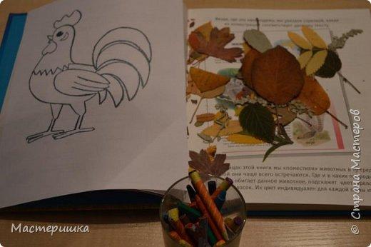 У Лёши появилась идея изобразить петушка  с помощью осенних листьев. Их прожилки напоминают пёрышки петушка. За основу взяли урок ИЗО у Натальи Михайловны. http://stranamasterov.ru/node/1054036 фото 2
