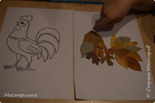 У Лёши появилась идея изобразить петушка  с помощью осенних листьев. Их прожилки напоминают пёрышки петушка. За основу взяли урок ИЗО у Натальи Михайловны. http://stranamasterov.ru/node/1054036 фото 4