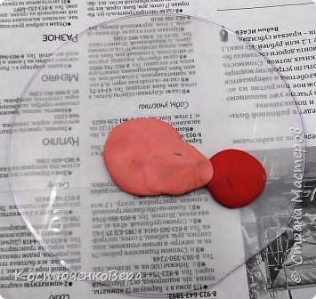 Радужные петушки фото 4