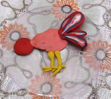 Радужные петушки фото 6