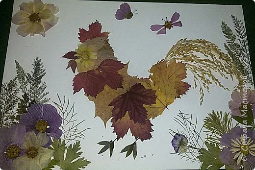 """Накопились у меня сухие цветы и листочки. Как всегда-заготавливала """"на всякий случай"""". И в этот раз решила-а почему бы и нет?:)) Кстати, если это делать с детьми-это не только интересно и увлекательно складывать фигурки и картинки,развивать фантазию,но и познавательно - можно изучить и растения, и цвета.  фото 9"""