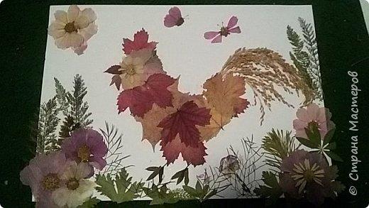 """Накопились у меня сухие цветы и листочки. Как всегда-заготавливала """"на всякий случай"""". И в этот раз решила-а почему бы и нет?:)) Кстати, если это делать с детьми-это не только интересно и увлекательно складывать фигурки и картинки,развивать фантазию,но и познавательно - можно изучить и растения, и цвета.  фото 10"""
