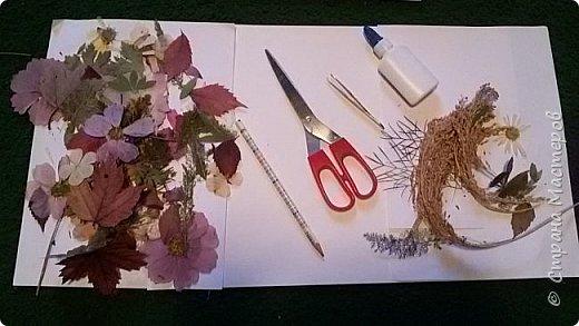 """Накопились у меня сухие цветы и листочки. Как всегда-заготавливала """"на всякий случай"""". И в этот раз решила-а почему бы и нет?:)) Кстати, если это делать с детьми-это не только интересно и увлекательно складывать фигурки и картинки,развивать фантазию,но и познавательно - можно изучить и растения, и цвета.  фото 2"""