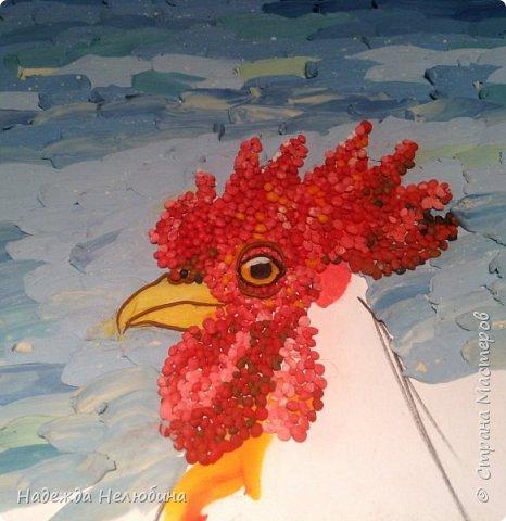 Мой красивый петушок,  ярко-красный гребешок. фото 5