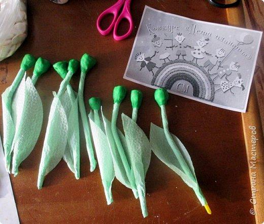 Катя сделала первые весенние цветы - подснежники. Подснежники - первое дыхание весны. Они занесены в Красную книгу, нуждаются в защите. фото 5