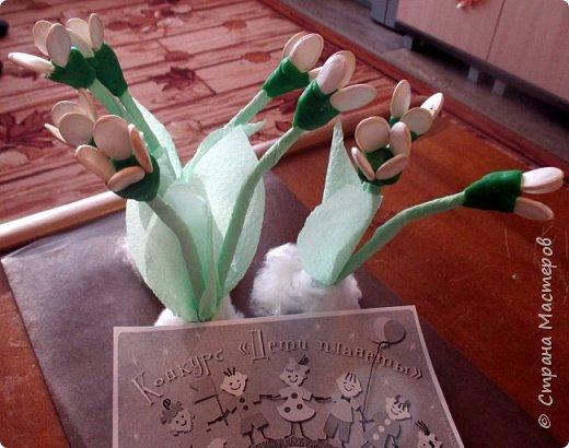 Катя сделала первые весенние цветы - подснежники. Подснежники - первое дыхание весны. Они занесены в Красную книгу, нуждаются в защите. фото 8