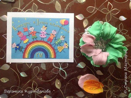 Вот моё сокровище - цветы,  без которных жизнь бессмысленна. фото 5