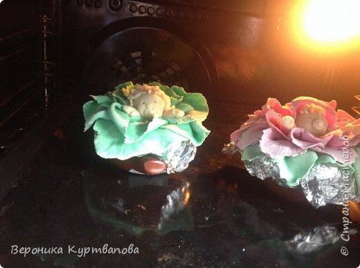 Вот моё сокровище - цветы,  без которных жизнь бессмысленна. фото 9