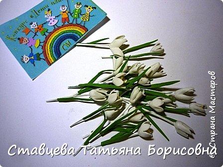 Добрый день или вечер, Страна мастеров! Мы хотим рассказать Вам одну на наш взгляд поучительную сказку для малышей и не только, придуманную нами.  Как-то раз ранней весной одна юная крымчанка   решила сходить в лес и нарвать корзинку первых весенних цветов. Одни за другими в Крымских  горных лесах  расцветают прекрасные создания природы:  и подснежники, и пролески, и крокусы разных видов, и примула и многие другие  цветы. Девочка так увлеклась любованием природной красоты, что не заметила, как оказалась на чудо - полянке. И перед её глазами как будто из маленького белоснежного  цветка появилась Волшебная Фея. В руках она держала лейку, из которой, будто ручьём, вытекали сказочно красивые цветы, и полянка сразу ожила и засверкала различными природными красками. Девочка попросила  у Феи разрешения  нарвать немного  цветов в свою корзинку. А Волшебная Фея улыбнулась в ответ и  сказала:  «Как прекрасен этот мир                              – посмотри! Ты весенних первоцветов                                      – не губи! И тогда наш шар земной                                 зацветёт, Будто встанут все цветы в                                  хоровод!» Это была Фея Первоцветов, которая сажала цветы и ухаживала за ними на нашей самой прекрасной Планете – Земля.  И тогда  девочка поняла, что если каждый гость леса будет рвать для себя даже самый малый букетик, то наши полянки, леса и луга опустеют и всему Живому на Земле станет очень  грустно!  И юная девочка для себя решила, что, немного пофантазировав,  можно сделать красивые цветы из любого материала – из бумаги, ткани,  ракушек,  фоамирана и порадовать своих близких такими замечательными букетами!   фото 17