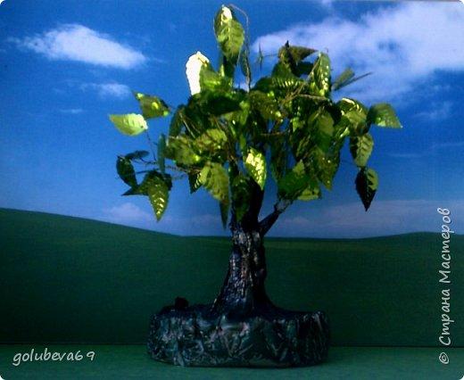 """Представляем на конкурс """"Дети планеты"""" коллективную работу обучающихся 1 класса, наше Зелёное деревце. Где было пустое место, где не было ничего, Пусть каждый посадит дерево и не забудет его. (В. Бересто Деревья окружают нас постоянно. Дерево - прекрасный объект для фенологических наблюдений. Так деревья имеют ярко выраженные сезонные изменения. На их примере могут быть рассмотрены взаимосвязи растений с окружающей средой и другими живыми организмами. Деревья играют важную роль в нашей жизни. Состояние этих растений, их внешний облик отражают экологическую обстановку, в которой они обитают. Деревья – это крупные объекты. С ними ребенку проще общаться «на равных», легче представить его другом.  Однако дети, как правило, почти не обращают на них внимания. Гораздо больший интерес они проявляют к животным и цветущим растениям. Кроме того, дети часто воспринимают растения, в том числе и деревья, как неживые объекты. Поскольку у них нет способов передвижения, аналогичным тем, которые есть у животных. И всё таки дерево живое. На занятиях кружка """"Страна Мастерляндия"""" мы начали заниматься бисероплетением, делаем различные деревья из бисера, бусин и пайеток. Вот и для конкурса мы решили сделать деревце из зелёных пайеток-листочков. фото 1"""