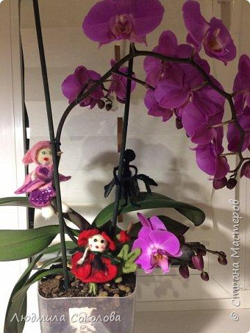 Дети - цветы жизни. фото 11