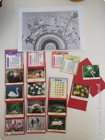 """Даша решила изготовить календарь. На каждый месяц она наклеила виды растений, животных, птиц, рыб из """"Красной книги Нижегородской области"""". фото 7"""