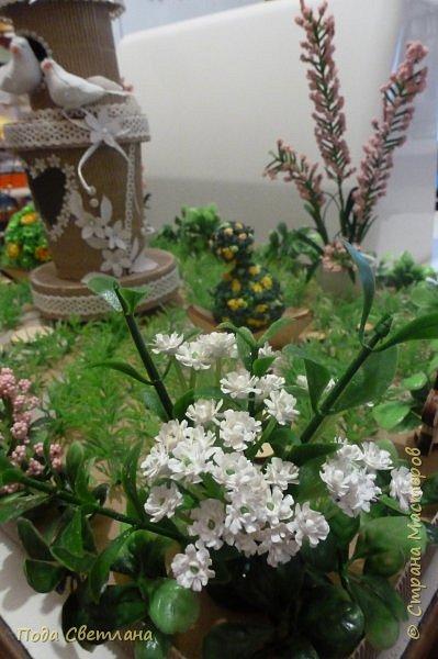 """""""Птичий рай""""- -экологический уголок. В Москве в Ботаническом саду есть японский сад - кусочек Японии-нeбoльшoй yгoлoк типичнoгo для Cтpaны Bocxoдящeгo coлнцa лaндшaфтa. Мы смотрели на цветущую сакуру , ходили по дорожкам, любовались мостиками и  pyчьём c кacкaдoм вoдoпaдoв....Захотелось сделать свой уголок...весенний, птичий...  фото 20"""