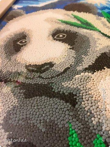 Знакомьтесь, мама панда и её дочка - гости из далекого Китая, заглянули к нам на праздник! Работа выполнена в технике обратной аппликации из пластилиновых горошинок. фото 6