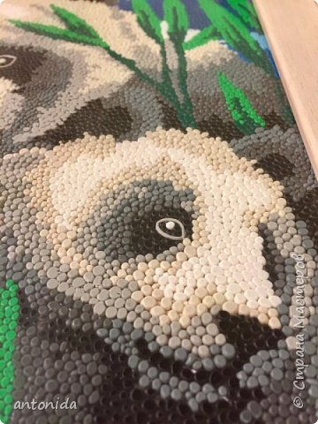 Знакомьтесь, мама панда и её дочка - гости из далекого Китая, заглянули к нам на праздник! Работа выполнена в технике обратной аппликации из пластилиновых горошинок. фото 7