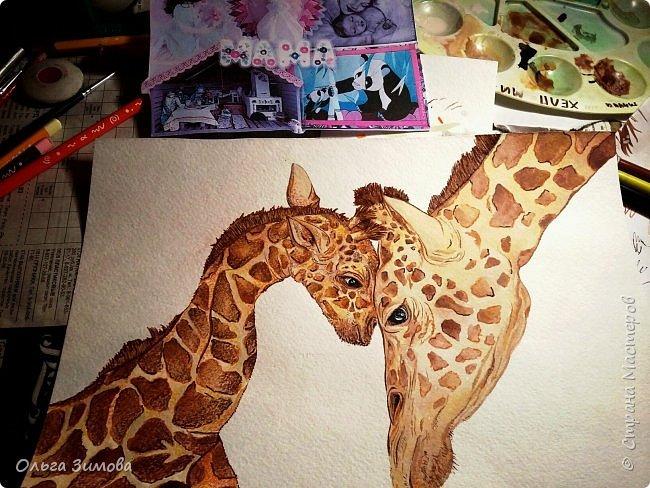 """Моё любимое животное это жирафы.  Они очень красивые, грациозные смешные и милые. Откуда берутся жирафы? Почти с двухметровой высоты. Пятнадцать месяцев мама-жираф вынашивает своего ребенка, а затем - роды, и единственный детеныш жирафа, весящий около 60 кг, падает на землю с двухметровой высоты. Во всем есть своя польза: при таком """"ошеломительном"""" рождении легко разрывается пуповина.   фото 4"""