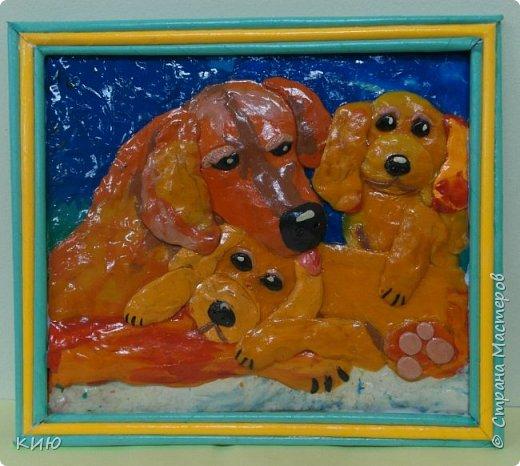 Вот какое собачье семейство получилось у Ксюши в итоге. фото 7