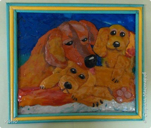 Вот какое собачье семейство получилось у Ксюши в итоге. фото 1
