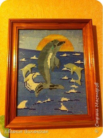 """Приветствуем всех любителей дельфинов!!! А разве их можно не любить? Они невероятно добродушны, всегда веселы и игривы, не даром кажется, что они все время улыбаются!  Когда родился мой младший сын, то мы, в семье, называли его Дельфинчик. Плаванием начали заниматься сразу же после рождения и все эти годы он чувствует себя как """" рыба в воде"""". Мы с ним много читали о дельфинах и узнали о том, что это вовсе не рыбы, что их детеныши рождаются так же как и человек и питается маминым молочком, что в отличии от рыб у дельфина нет чешуи, а тело его покрыто нежной кожей. Нет жабр, как у рыб, а есть легкие. дельфины обитают только в соленой воде. Питаются рыбой,  а во рту у них аж 210 !!! зубов. Мозг дельфинов очень похож на человеческий, а нервных клеток и извилин у них даже больше. Дельфины очень подвижны и игривы, невероятно доброжелательны к людям вообще, но особенно к детям. Для общения эти умнейшие животные применяют около 14000 различных звуковых сигналов, что соответствует словарному запасу человека. При рождении, малышу-дильфиненку, стая присваивает имя, которое он носит всю свою жизнь и оно тоже соответствует определенному набору звуковых сигналов. фото 2"""
