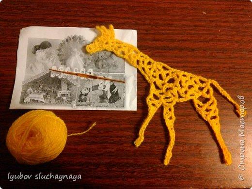 Жирафы - удивительно оригинальные и своеобразные животные. Из всех млекопитающих они самые высокие - за счет шеи и ног. У них необычная форма туловища: хребет резко опущен вниз. Длина жирафа от хвоста до грудной клетки всего два с половиной метра. Хвост кончается кисточкой, его длина около метра. Отдельные подвиды отличаются друг от друга окраской и формой пятен. У жирафов гладкая шерсть, на спине и шее - короткая темная грива. На голове - от двух до пяти рожков.   Мне очень нравится ЖИРАФ —  Высокий рост и кроткий нрав.  Жирафа — он ведь выше всех —  Боятся даже львы.  Но не вскружил такой успех  Жирафу головы.  Легко ломает спину льву  Удар его копыта,  А ест он листья и траву —  И не всегда досыта…  Мне очень нравится Жираф,  Хотя боюсь, что он неправ!  (автор ЗАХОДЕР БОРИС ВЛАДИМИРОВИЧ)  фото 5