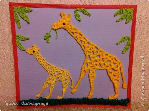 Жирафы - удивительно оригинальные и своеобразные животные. Из всех млекопитающих они самые высокие - за счет шеи и ног. У них необычная форма туловища: хребет резко опущен вниз. Длина жирафа от хвоста до грудной клетки всего два с половиной метра. Хвост кончается кисточкой, его длина около метра. Отдельные подвиды отличаются друг от друга окраской и формой пятен. У жирафов гладкая шерсть, на спине и шее - короткая темная грива. На голове - от двух до пяти рожков.   Мне очень нравится ЖИРАФ —  Высокий рост и кроткий нрав.  Жирафа — он ведь выше всех —  Боятся даже львы.  Но не вскружил такой успех  Жирафу головы.  Легко ломает спину льву  Удар его копыта,  А ест он листья и траву —  И не всегда досыта…  Мне очень нравится Жираф,  Хотя боюсь, что он неправ!  (автор ЗАХОДЕР БОРИС ВЛАДИМИРОВИЧ)  фото 1