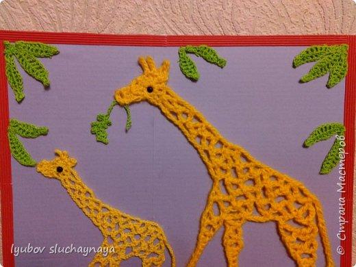 Жирафы - удивительно оригинальные и своеобразные животные. Из всех млекопитающих они самые высокие - за счет шеи и ног. У них необычная форма туловища: хребет резко опущен вниз. Длина жирафа от хвоста до грудной клетки всего два с половиной метра. Хвост кончается кисточкой, его длина около метра. Отдельные подвиды отличаются друг от друга окраской и формой пятен. У жирафов гладкая шерсть, на спине и шее - короткая темная грива. На голове - от двух до пяти рожков.   Мне очень нравится ЖИРАФ —  Высокий рост и кроткий нрав.  Жирафа — он ведь выше всех —  Боятся даже львы.  Но не вскружил такой успех  Жирафу головы.  Легко ломает спину льву  Удар его копыта,  А ест он листья и траву —  И не всегда досыта…  Мне очень нравится Жираф,  Хотя боюсь, что он неправ!  (автор ЗАХОДЕР БОРИС ВЛАДИМИРОВИЧ)  фото 9