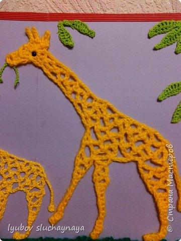 Жирафы - удивительно оригинальные и своеобразные животные. Из всех млекопитающих они самые высокие - за счет шеи и ног. У них необычная форма туловища: хребет резко опущен вниз. Длина жирафа от хвоста до грудной клетки всего два с половиной метра. Хвост кончается кисточкой, его длина около метра. Отдельные подвиды отличаются друг от друга окраской и формой пятен. У жирафов гладкая шерсть, на спине и шее - короткая темная грива. На голове - от двух до пяти рожков.   Мне очень нравится ЖИРАФ —  Высокий рост и кроткий нрав.  Жирафа — он ведь выше всех —  Боятся даже львы.  Но не вскружил такой успех  Жирафу головы.  Легко ломает спину льву  Удар его копыта,  А ест он листья и траву —  И не всегда досыта…  Мне очень нравится Жираф,  Хотя боюсь, что он неправ!  (автор ЗАХОДЕР БОРИС ВЛАДИМИРОВИЧ)  фото 13
