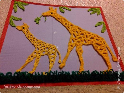 Жирафы - удивительно оригинальные и своеобразные животные. Из всех млекопитающих они самые высокие - за счет шеи и ног. У них необычная форма туловища: хребет резко опущен вниз. Длина жирафа от хвоста до грудной клетки всего два с половиной метра. Хвост кончается кисточкой, его длина около метра. Отдельные подвиды отличаются друг от друга окраской и формой пятен. У жирафов гладкая шерсть, на спине и шее - короткая темная грива. На голове - от двух до пяти рожков.   Мне очень нравится ЖИРАФ —  Высокий рост и кроткий нрав.  Жирафа — он ведь выше всех —  Боятся даже львы.  Но не вскружил такой успех  Жирафу головы.  Легко ломает спину льву  Удар его копыта,  А ест он листья и траву —  И не всегда досыта…  Мне очень нравится Жираф,  Хотя боюсь, что он неправ!  (автор ЗАХОДЕР БОРИС ВЛАДИМИРОВИЧ)  фото 15