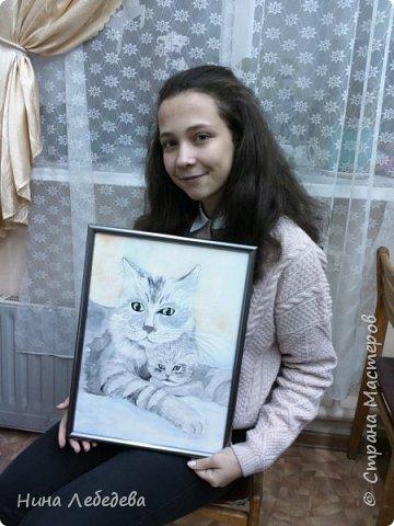 Кошачья забота фото 7