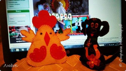 Семья домашних питомцев в преддверье нового года! фото 3
